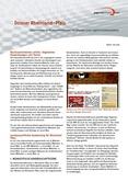 Erkenntnisse zu Rechtsextremismus im Internet unter Jugendschutzaspekten. Dossier Rheinland-Pfalz